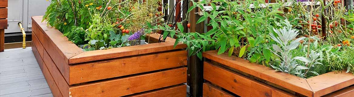 Balkon & Terrasse Als Standorte Für Dein Hochbeet Hochbeet Balkon Bauen Bepflanzen